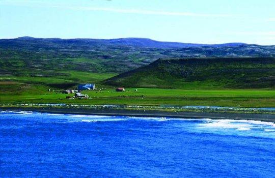 sveinungsvík
