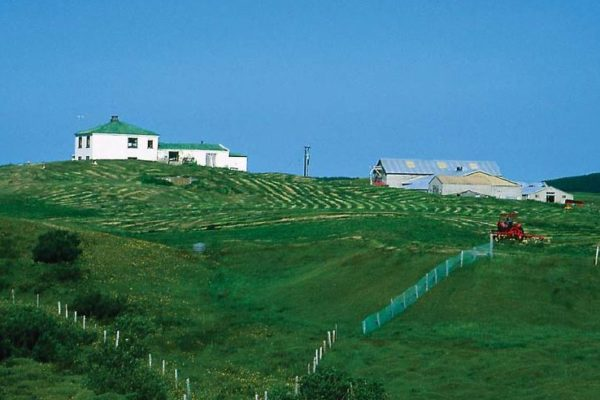 vestaraland2
