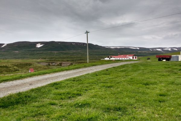 Þvera 5
