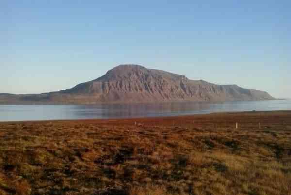 Miðfjarðarnes 5