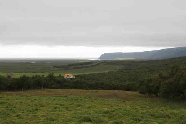 Leifstaðir (3)